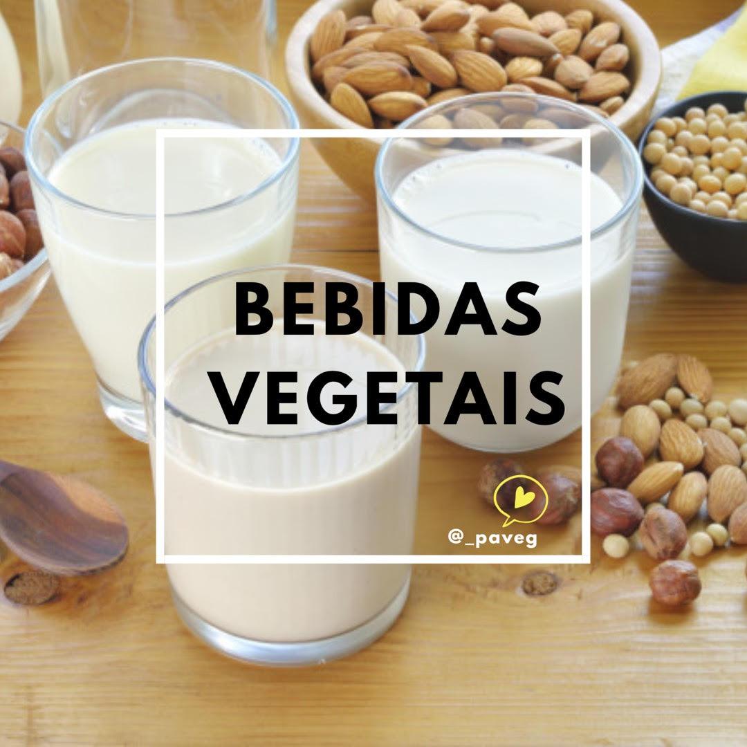 Bebidas Vegetais